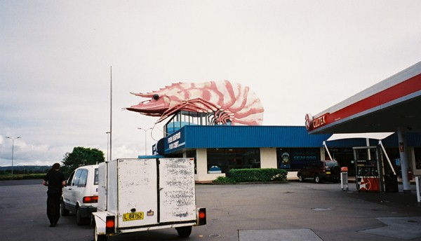 Giant Prawn, Balina (see Bill Bryson's Down Under)